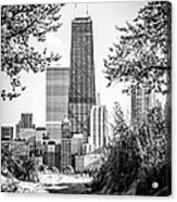 Hancock Building Through Trees Black And White Photo Acrylic Print