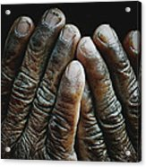 Hands Of Time 2 Acrylic Print