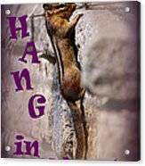 Hang In There Chipmunk Acrylic Print