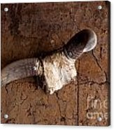 Hanging Cow Horns-africa Acrylic Print
