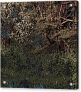 Hanging Garden In Moonlight Acrylic Print