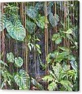 Hanging Gardens V5 Acrylic Print
