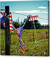 Hanging On - The American Spirit By William Patrick And Sharon Cummings Acrylic Print