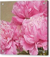 Happiness In Pink Silk Acrylic Print