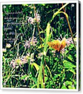 Happiness Is A Butterfly Acrylic Print