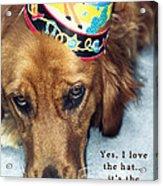 Happy Birthday Buddy  Acrylic Print