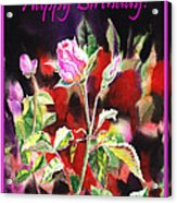 Happy Birthday Rose Acrylic Print