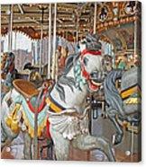 Happy Grey Pony Acrylic Print