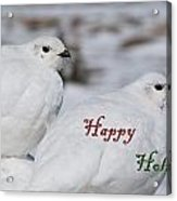 Happy Holidays - Winter Ptarmigan Acrylic Print
