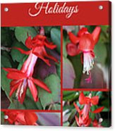 Happy Holidays Natural Christmas Card Or Canvas Acrylic Print
