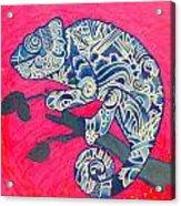 Happy Iguana Acrylic Print