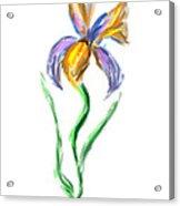 Happy Mother's Day Iris Acrylic Print
