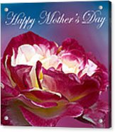 Happy Mother's Day Red Pink White Rose Acrylic Print