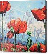 Happy Poppies  Acrylic Print