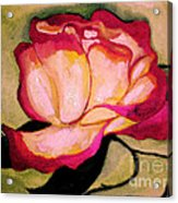 Happy Red Rose Acrylic Print by Sidney Holmes