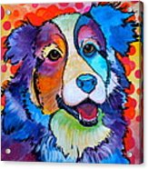Happy Scout Acrylic Print by Debi Starr