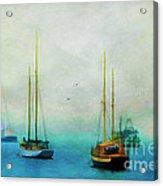 Harbor Fog Acrylic Print by Darren Fisher