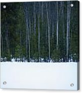 Hard Line Winter Acrylic Print