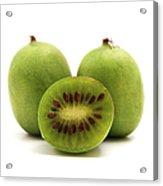 Hardy Kiwifruit Acrylic Print