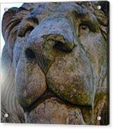 Harlaxton Lions Acrylic Print