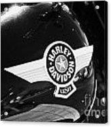 Harley Davidson Aviation Themed Star Logo On Fat Boy Bike In Orlando Florida Usa Acrylic Print