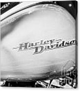 Harley Davidson Logo On Street Glide Bike Orlando Florida Usa Acrylic Print