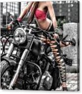 Harley In The City Acrylic Print