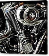 Harley Acrylic Print by Joe Bonita