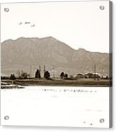 Harpers Lake Louisville Colorado Acrylic Print