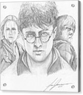 Harry And Friends Acrylic Print