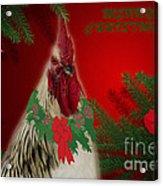 Harry Christmas Wishes Acrylic Print