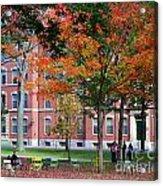 Harvard Yard Fall Colors Acrylic Print