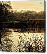 Harvest 2o Acrylic Print