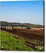 Harvest Time In Holland Marsh Ontario Acrylic Print