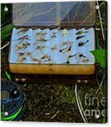 Hatch Match  Acrylic Print by Tim Rice