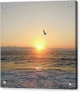 Hatteras Island Sunrise 2 8/23 Acrylic Print