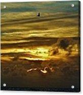 Hatteras Island Sunrise 3 9/10 Acrylic Print