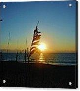 Hatteras Island Sunrise 4 8/23 Acrylic Print
