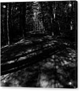 Haunted Forest Acrylic Print
