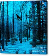 Haunting Dark Blue Surreal Woodlands With Crow  Acrylic Print by Kathy Fornal