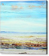 Hauxley Haven Low Tide Rhythms And Driftwood Acrylic Print by Mike   Bell