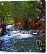 Havasu Creek Acrylic Print