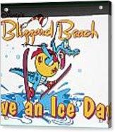 Have An Ice Day Acrylic Print