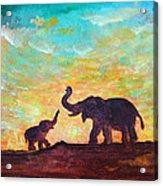 Have Courage Acrylic Print