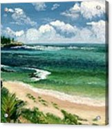 Hawaii Beach Acrylic Print