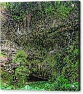 Hawaii Fern Grotto Acrylic Print