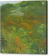 Hawaii II Acrylic Print