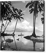 Hawaii Tropical Scene Acrylic Print