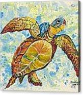 Hawaiian Sea Turtle 2 Acrylic Print