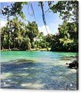 Hawaiian Landscape 4 Acrylic Print